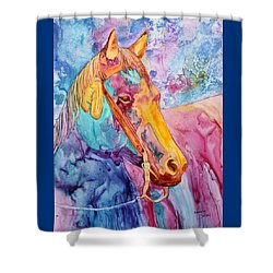 Horse Of Many Colors Shower Curtain