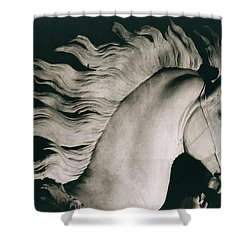Horse Of Marly Shower Curtain by Coustou