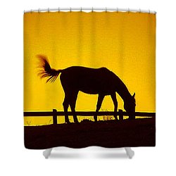 Horse On The Hill Shower Curtain
