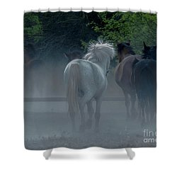 Horse 8 Shower Curtain