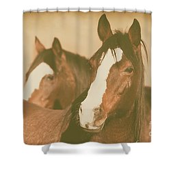 Shower Curtain featuring the photograph Horse Portrait by Ana V Ramirez