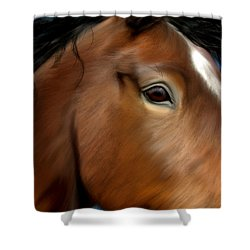 Horse Portrait Close Up Shower Curtain