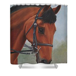 Shower Curtain featuring the painting Horse Portrait by Jindra Noewi
