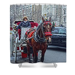 Horse Power Shower Curtain by Sandy Moulder