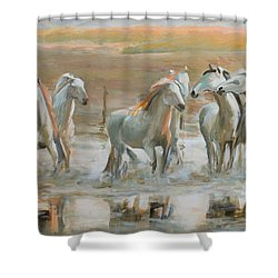 Horse Reflection Shower Curtain