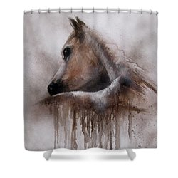 Horse Shy Shower Curtain
