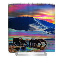 Horse Sunrise Shower Curtain