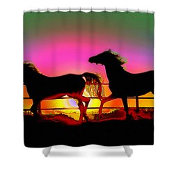 Horse Sunset Shower Curtain