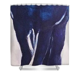 Horse Sz Shower Curtain