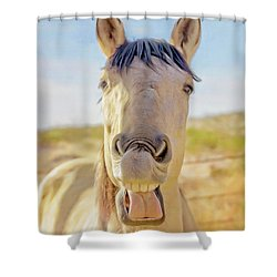 Horse Talk #2  Shower Curtain