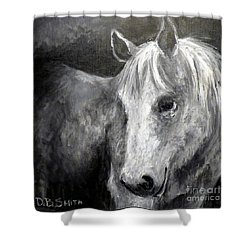 Horse With The Mona Lisa Smile Shower Curtain