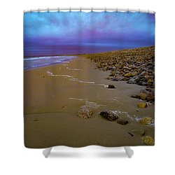 Horseneck Beach Shower Curtain