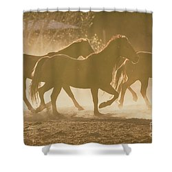 Shower Curtain featuring the photograph Horses And Dust by Ana V Ramirez