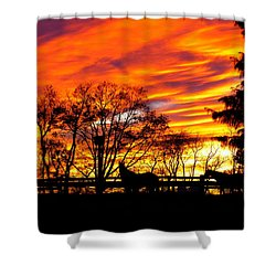 Horses And The Sky Shower Curtain by Donald C Morgan
