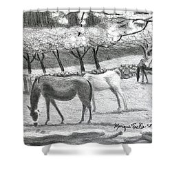 Horses And Trees In Bloom Shower Curtain