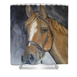 Horses Beauty Shower Curtain