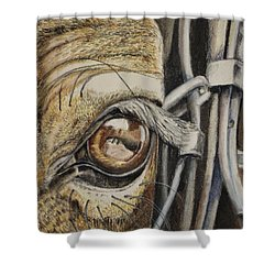 Horses Eye Shower Curtain
