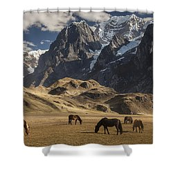 Shower Curtain featuring the photograph Horses Grazing Under Siula Grande by Colin Monteath