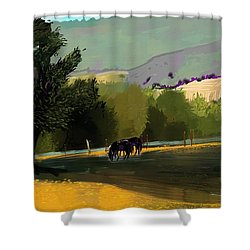 Horses In Field Shower Curtain