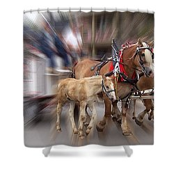 Horses In Motion Shower Curtain by David and Lynn Keller