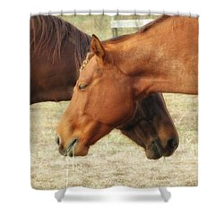 Horses In Sinc Shower Curtain by MTBobbins Photography