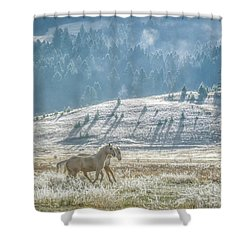 Horses In The Frost Shower Curtain