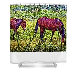 Horses In Tranquil Field Shower Curtain by Joel Bruce Wallach