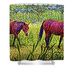 Horses In Tranquil Field Shower Curtain