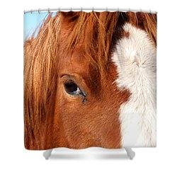 Horse's Mane Shower Curtain