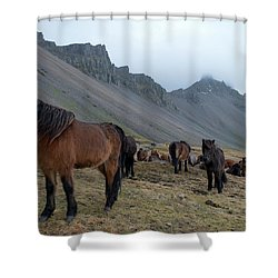 Shower Curtain featuring the photograph Horses Near Vestrahorn Mountain, Iceland by Dubi Roman