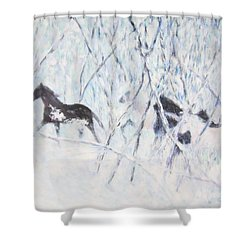 Horses Running In Ice And Snow Shower Curtain