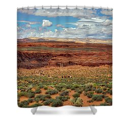 Shower Curtain featuring the photograph Horseshoe Bend  - Arizona by Jennifer Rondinelli Reilly - Fine Art Photography