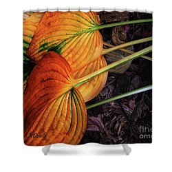 Hostas In Autumn Shower Curtain