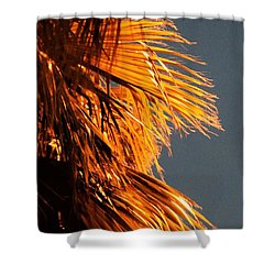 Hot Air Frizzies Shower Curtain