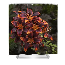 Hot Bouquet Shower Curtain by Morris  McClung