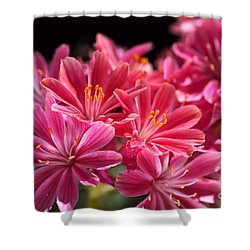 Hot Glowing Pink Delight Of Flowers Shower Curtain