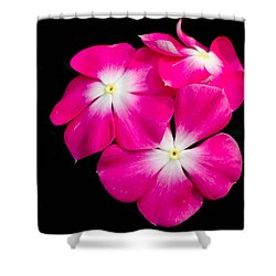 Hot Pink Flora Shower Curtain by Bruce Pritchett
