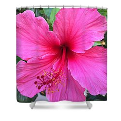 Hot Pink Hibiscus  Shower Curtain by Russell Keating