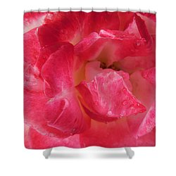 Hot Rose Shower Curtain