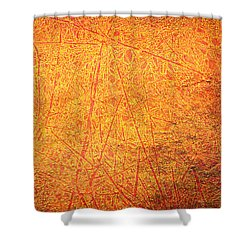 Hot Scratch Shower Curtain