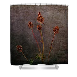 Shower Curtain featuring the photograph Hot Summer Victims by Randi Grace Nilsberg