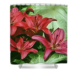 Hothouse Beauties Shower Curtain by Patricia Strand