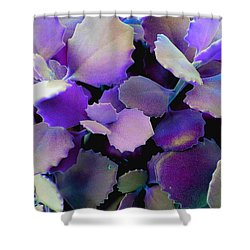 Hothouse Succulents Shower Curtain