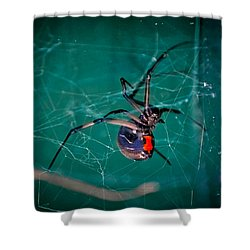 Hour Glass Of Death Shower Curtain