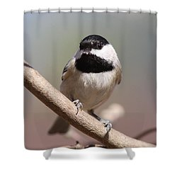 Hour Glass Shower Curtain