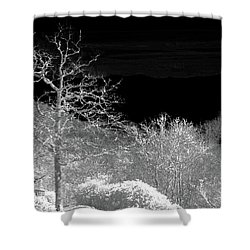 House In Winterland Shower Curtain by Dennis Baswell
