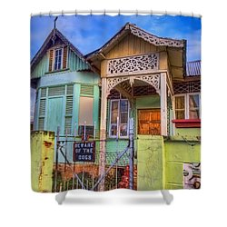 House Of Colors Shower Curtain