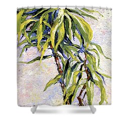 House Plant Shower Curtain