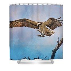 Housekeeping Osprey Art Shower Curtain by Jai Johnson