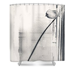 Houseplant #5147 Shower Curtain by Andrey Godyaykin
